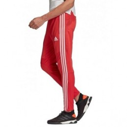 Adidas Tiro 19 Pants Red